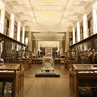Out-of-hours tour: an introduction to the British Museum