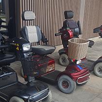 Illuminated Arboretum Mobility Scooter